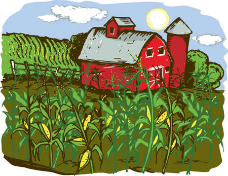 Corn Farm Stock Vector - 17443034