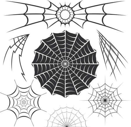 Araignée Collection Web Banque d'images - 17443063