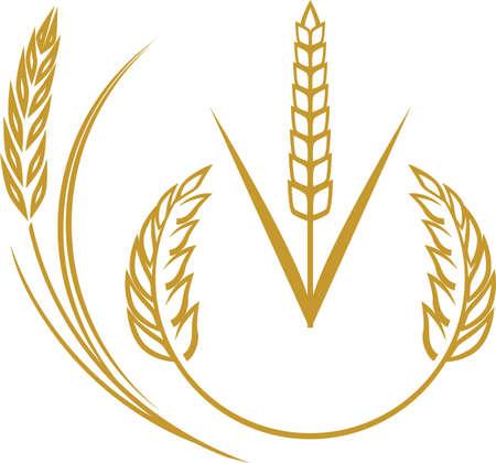 weizen ernte: Weizen Icons Illustration