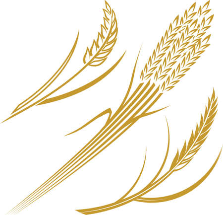 crop  stalks: Wheat Icons