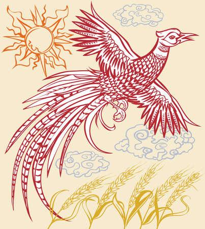 pheasant: Pheasant Flight Illustration