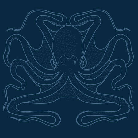 sea creatures: Line art illustration of a blue octopus