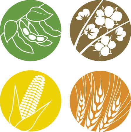 大豆、綿、トウモロコシ、小麦