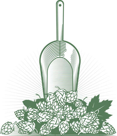 Hops Scoop Illustration