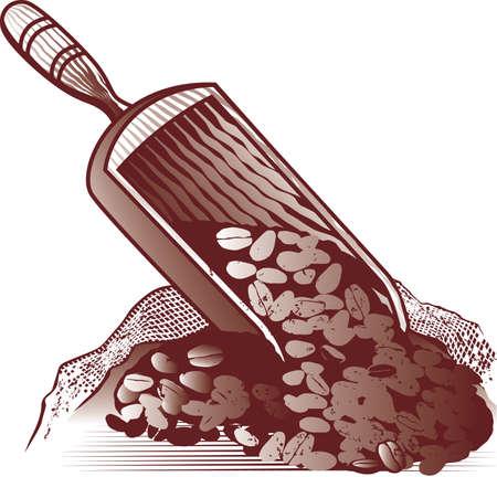 coffee sack: Coffee Bean Scoop Illustration
