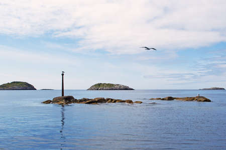 Seagulls on a stone in the Norwegian sea photo