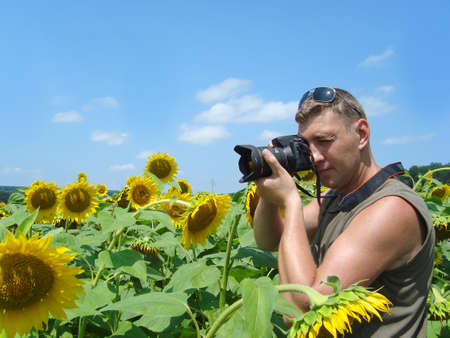 Photographer in the field of sunflowers in a sunny day photo
