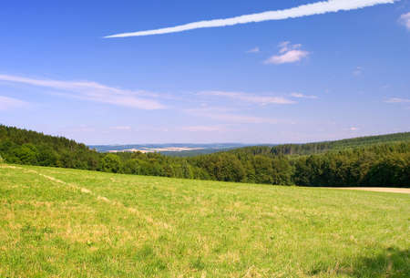 Landscape with the green field and followed by an aircraft in the blue sky photo