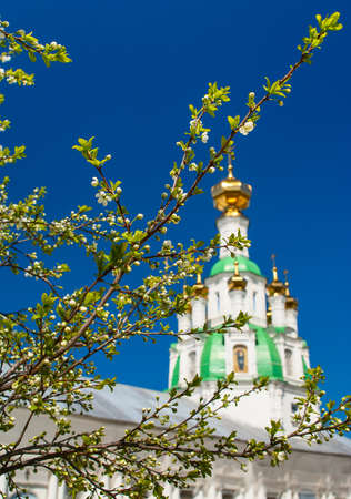 Branch of the cherry blossoms against a white church Stock Photo
