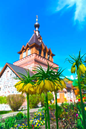 Spring blooming flowers against the background of the brick Orthodox Church