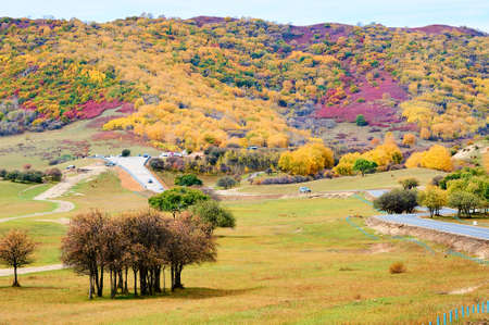 Ther autumn colorful mountains scenic