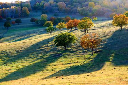 Autumn steppe sun setting.