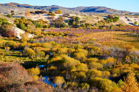 The autumn scenery Stock Photo