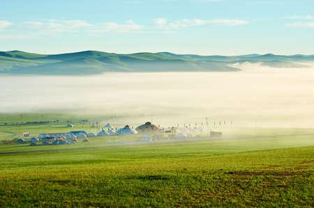The mongolian yurts in summer grassland  .