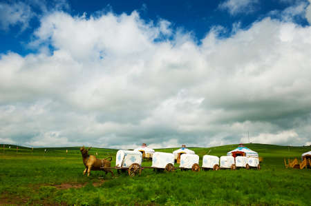 carriage on the summer grassland of Hulunbuir, China.