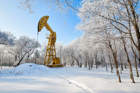 The urban forest park of Daqing Oilfield has a magnificent and beautiful rime landscape.