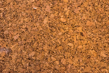 pressed: cork board texture  background Stock Photo