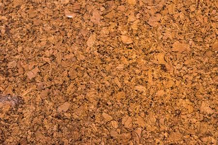 cork board: cork board texture  background Stock Photo