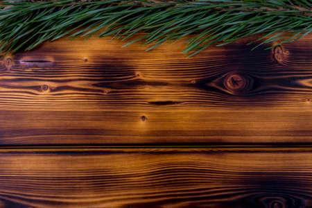 brunt: fir branch on a brunt wooden background texture