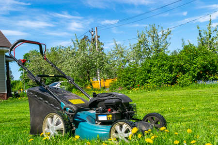 Mowing lawns. Lawn mower on green grass. Mower grass equipment. Mowing gardener care work tool. Close up view. Sunny day. Soft lightning