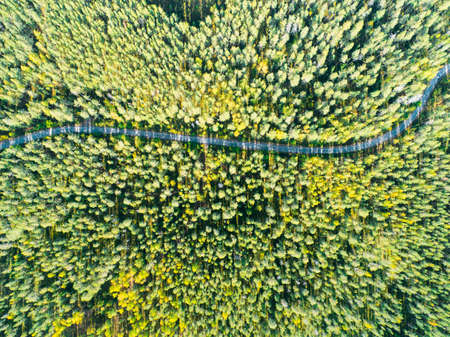Aerial view of a country road in the forest with moving cars. Landscape. Captured from above with a drone. Aerial bird's eye road with car. Aerial top view forest. Texture of forest view from above. Banco de Imagens