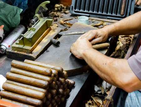 Traditional manufacture of cigars at the tobacco factory. Closeup of old hands making a cigar from tobacco leaves in a traditional cigar manufacture. Close up of hands making a cigar from tobacco leaves.