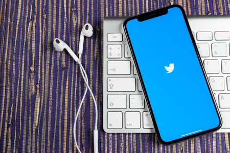 Sankt-Petersburg, Russia, February 10, 2019: Twitter application icon on Apple iPhone X smartphone screen close-up. Twitter app icon. Social media icon. Social network