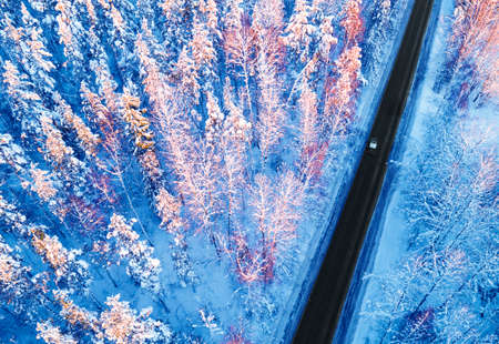 Aerial view of a car on winter road in the forest. Winter landscape countryside. Aerial photography of snowy forest with a car on the road. Captured from above with a drone. Aerial photo. Car in motio
