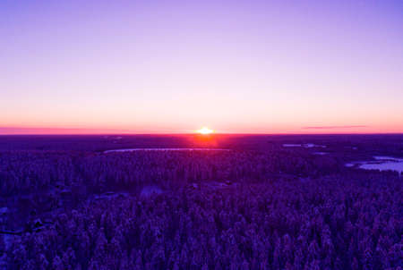 Aerial view of a gold sunset over winter snow-covered pine forest. Winter forest texture. Aerial view. Aerial drone view of a winter landscape. Snow covered forest. Dramatic gold sunset sky.