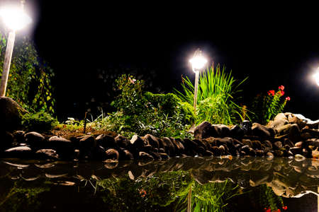 Garden pond at night. Illuminated pond shore in a night. Garden fish pond. Garden pond on natural landscape. Water garden natural pool. Exterior of a private garden. Pool with rocks