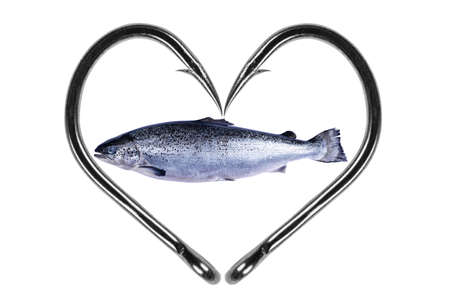 Fishing hook love heart sign with salmon fish isolated on a white background. Fishing hook close up. Fishing tackle. Stainless steel fishing hooks. Fish hooks in heart shape. Concept love fishing.