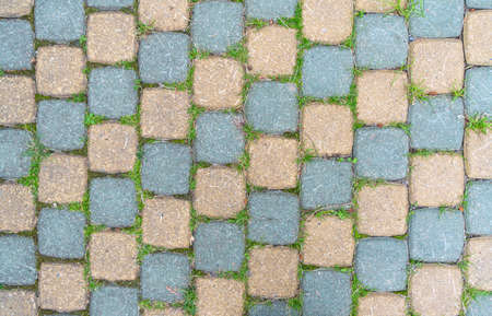 Sidewalk tiles. Closeup of paving slabs background. Street paving slabs. Cement block of the road. Cement brick squared stone floor background. Green grass between the slabs Banco de Imagens