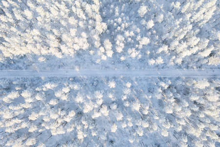 Aerial view of a car road in winter snow covered pine forest. Winter forest texture with road. Aerial view. Aerial drone view of a winter landscape. Snow covered forest background