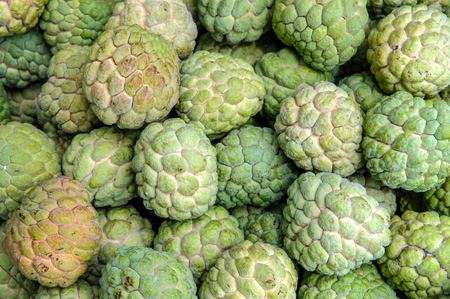 custard apple: Custard apple - Stock Image