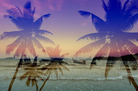 Coconut palms silhouette on sand beach  photo