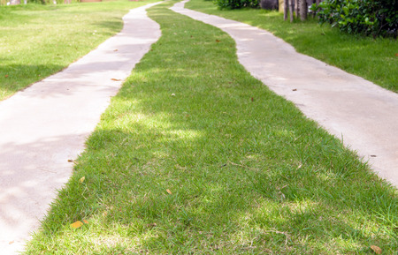 Two pathway in the Park photo