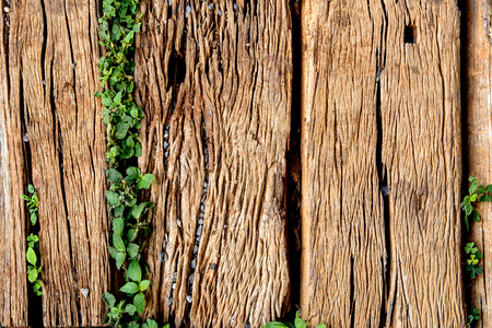 Old Weathered Cracked Wooden railroad tie Texture