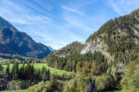 fur trees: landscape mountain Stock Photo