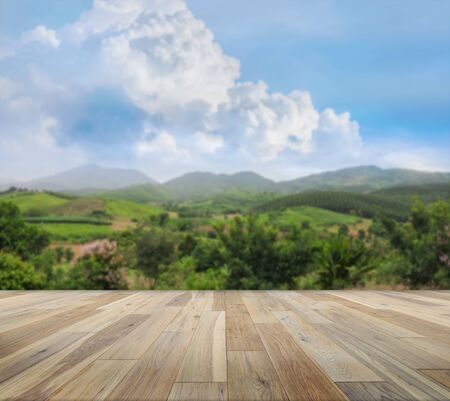 Paving wood floor on the forest background