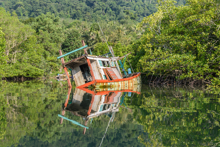discarded: discarded wood boat in mangrove forest