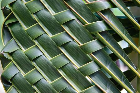 in bondage: Pattern weave of coconut leaves