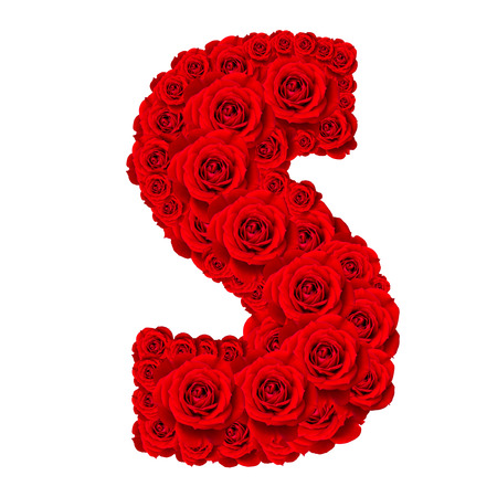 s alphabet: Rose alphabet set - Alphabet capital letter S made from red rose blossoms isolated on white background