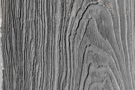 wood texture background: wood grain texture background Stock Photo