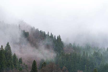 gassho zukuri: Mountains and trees Landscape of Gassho-zukuri Village, Shirakawago (Shirakawa-go) Village, Japan