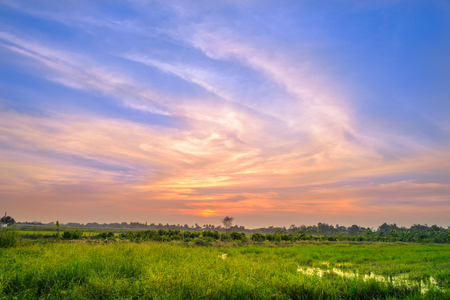 Landscape of field, rural and idyllic with beautiful clouds in countryside on sunset