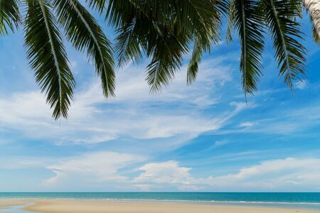 beautiful beach and tropical sea with palm trees in Thailand. Summer relax outdoor concept.