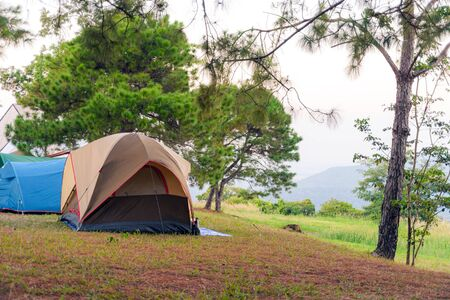 Tourist tent on among meadow in the sunset overlooking mountains. outdoors camping