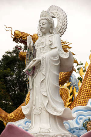 White guan scalpture standing in front off golden dragon   photo