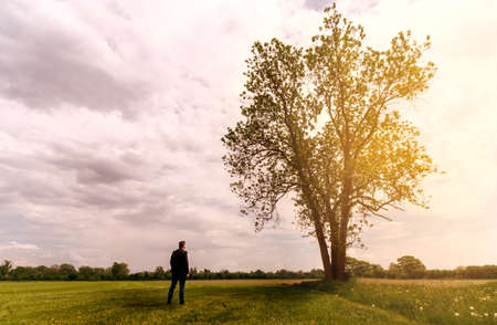 businessman stands in front of a tree at sunset and draws new vitality and hope outdoor Stockfoto