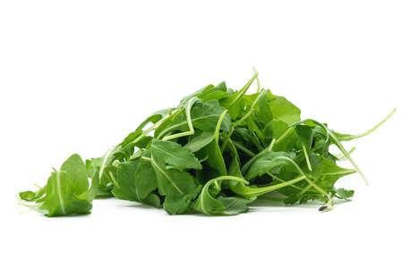fresh green rucula salad isolated on white background studio shot